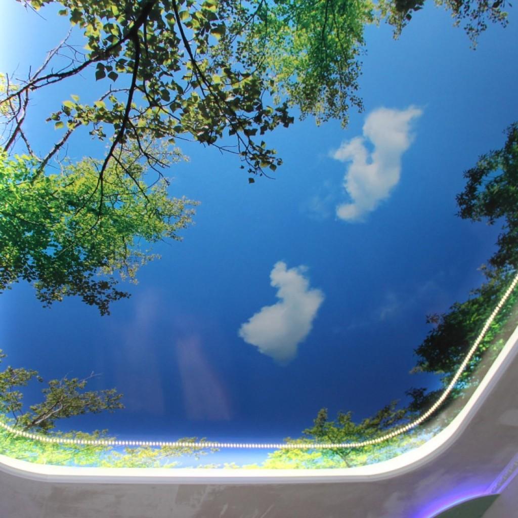 Натяжной потолок - пейзаж